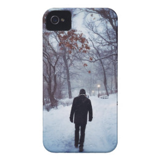 A Chilly Path In Central Park iPhone 4 Cover
