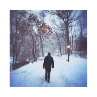 A Chilly Path In Central Park Metal Photo Print
