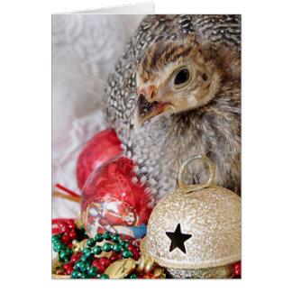 A Christmas Guinea Card