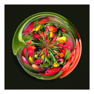 A CIRCLE OF TULIPS PHOTO PRINT