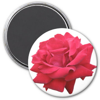 A Classic Red Rose 3 Inch Round Magnet