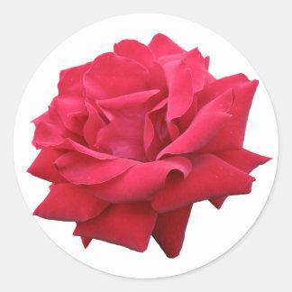 A Classic Red Rose Classic Round Sticker