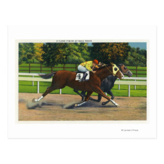 A Close Finish at the Race Track, Horses Postcard