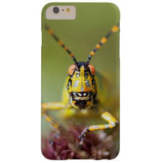 A close-up of an Elegant Grasshopper Barely There iPhone 6 Plus Case