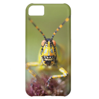 A close-up of an Elegant Grasshopper Case For iPhone 5C