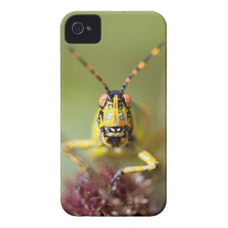 A close-up of an Elegant Grasshopper Case-Mate iPhone 4 Case