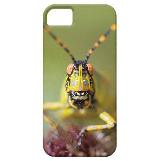 A close-up of an Elegant Grasshopper iPhone SE/5/5s Case