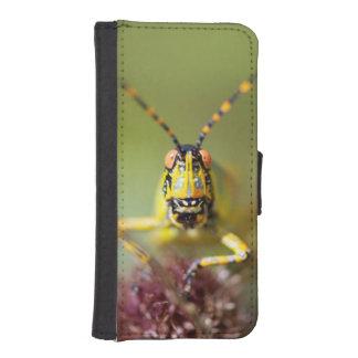 A close-up of an Elegant Grasshopper iPhone SE/5/5s Wallet Case