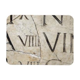 A close-up of ancient Roman letters on marble. Vinyl Magnets