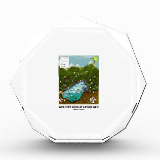 A Closer Look At A Food Web (Biology / Ecology) Acrylic Award