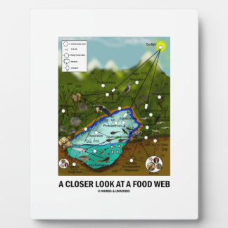 A Closer Look At A Food Web (Biology / Ecology) Plaque
