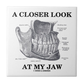 A Closer Look At My Jaw (Mandible Anatomy) Small Square Tile