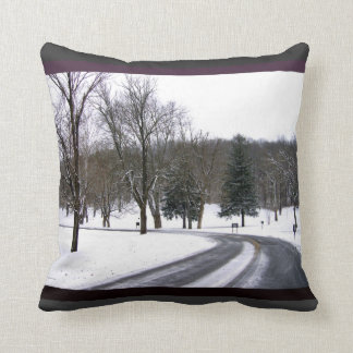 A Cold Winter Afternoon Drive Throw Pillow