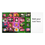 A Collage of Beautiful Water Lily and Lotus Images Picture Card
