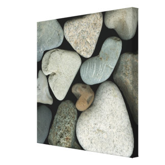A collage of heart-shaped beach stones canvas print