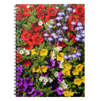 A Colorful Pastiche of Summer Annual Flowers Notebook
