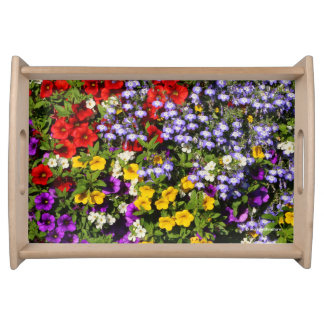 A Colorful Pastiche of Summer Annual Flowers Serving Tray