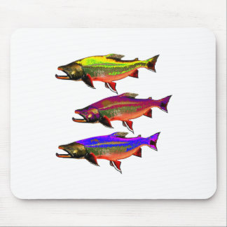 A Colorful Tail Mouse Pad