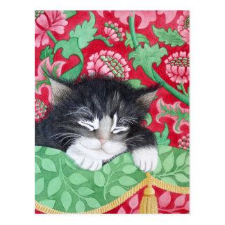 A comfy cat! postcard