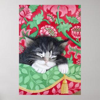 A comfy cat! print