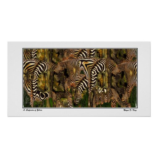 A Confusion of Zebras Poster