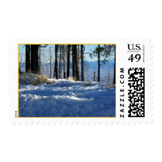A Cool Day Postage Stamps