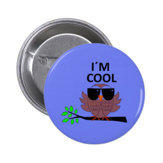 A Cool Dude's Wise Owl Pins
