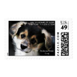 A Corgi In Your Heart Stamps