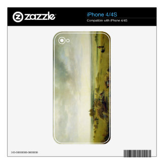 A Corn Field Decals For The iPhone 4S