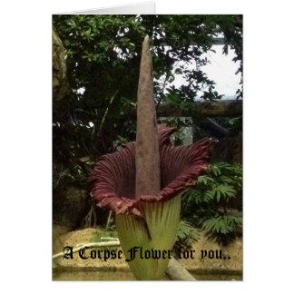 A Corpse Flower for you.. Card