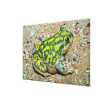 A Couch's Spadefoot toad Gallery Wrapped Canvas