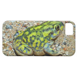 A Couch's Spadefoot toad iPhone 5 Case