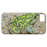 A Couch's Spadefoot toad iPhone SE/5/5s Case