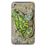 A Couch's Spadefoot toad iPod Touch Cover