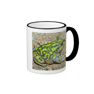 A Couch's Spadefoot toad Coffee Mugs
