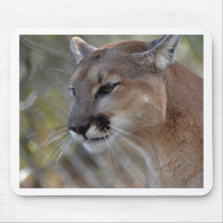 A Cougar in deep thought Mouse Pad