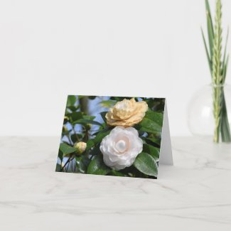 A Couple of Camellias Folded Note Card