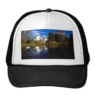 A couple of swans in pond, Ayer's Cliff, Quebec, C Trucker Hat