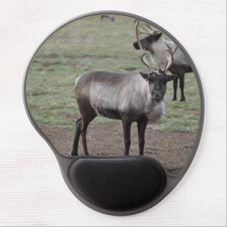 A couple Reindeer in a field on a caribou farm Gel Mouse Pad
