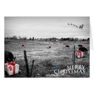 A Cow's Christmas Greeting Card