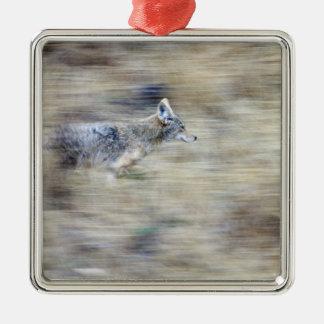 A coyote runs through the hillside blending into metal ornament