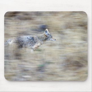 A coyote runs through the hillside blending into mouse pad