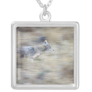 A coyote runs through the hillside blending into silver plated necklace