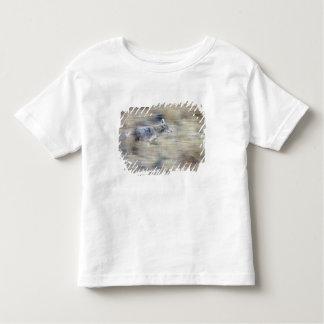 A coyote runs through the hillside blending into t shirt