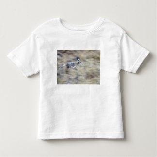 A coyote runs through the hillside blending into toddler t-shirt