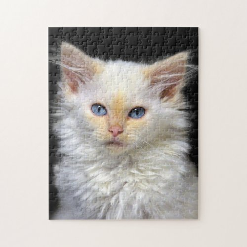 A Cream Siamese Kitten With Red Points Jigsaw Puzzle