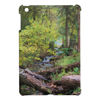 A Creek Runs Through It iPad Mini Covers