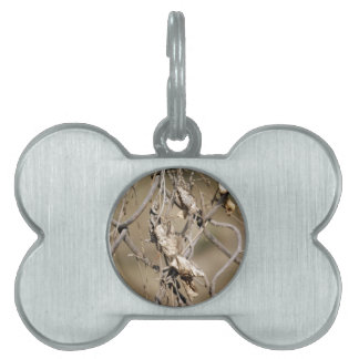 A cross link fence along with leaves pet tag