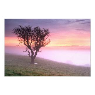 A Cumbrian misty sunrise Photo Print