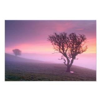 A Cumbrian misty Sunrise Photograph